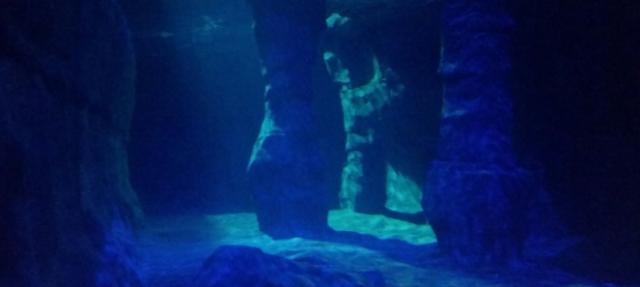 courage_underwater_depths